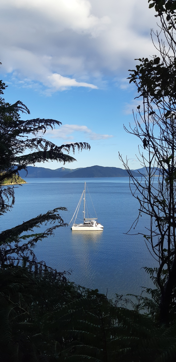 queen charlotte sound, resolution bay, sailing